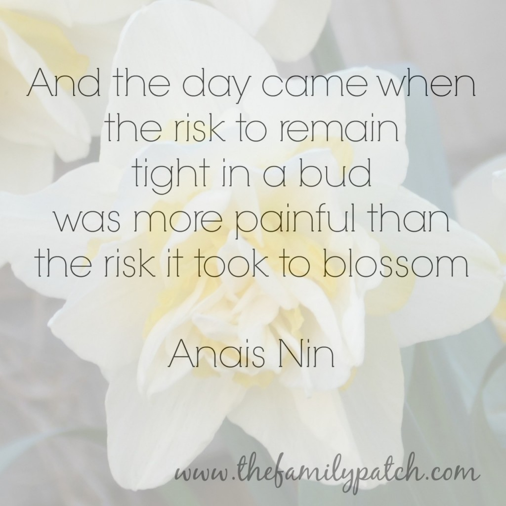And the day came with the risk to remain tight in a bud was more painful than the risk it took to blossom - Anais Nin
