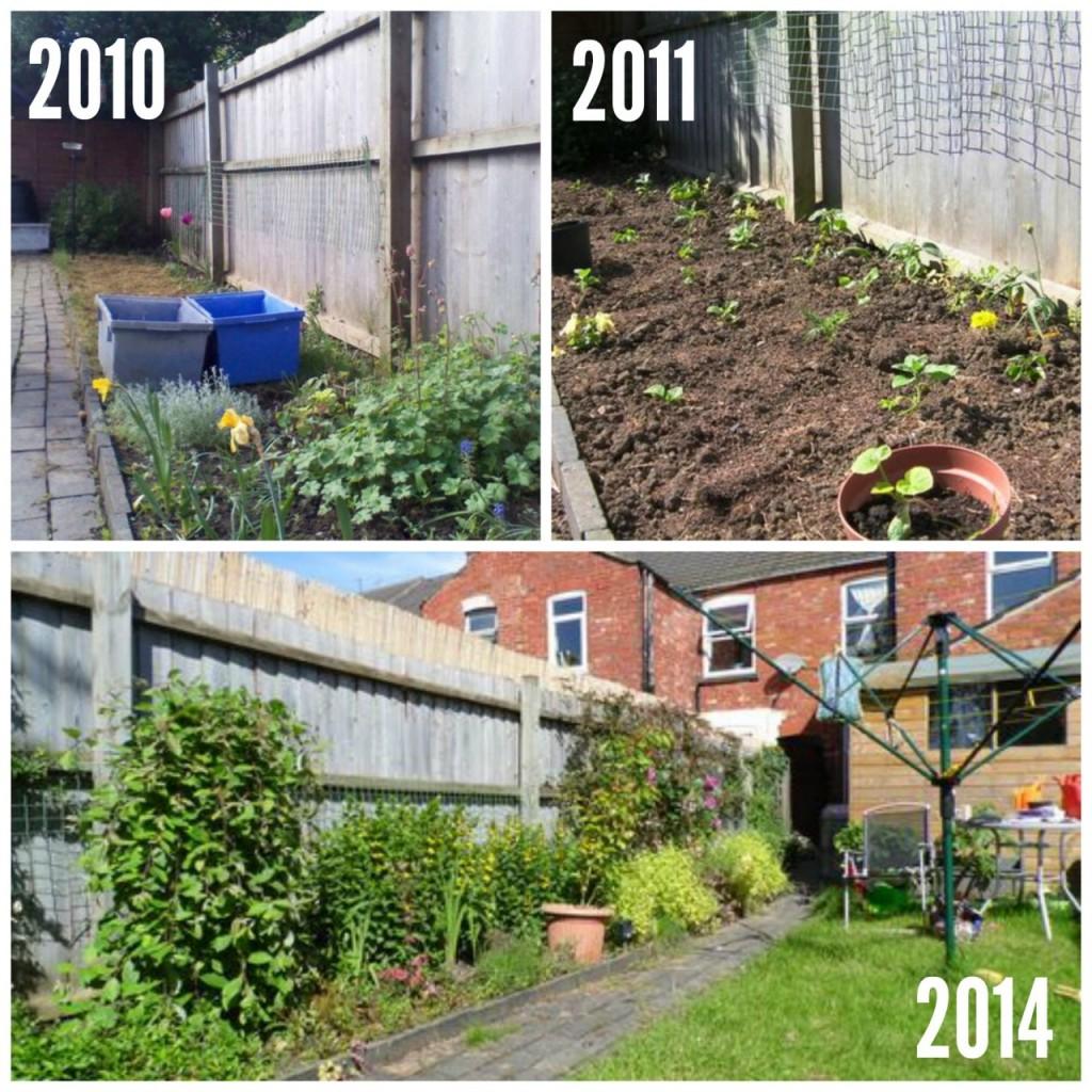 Evolution of Garden Border