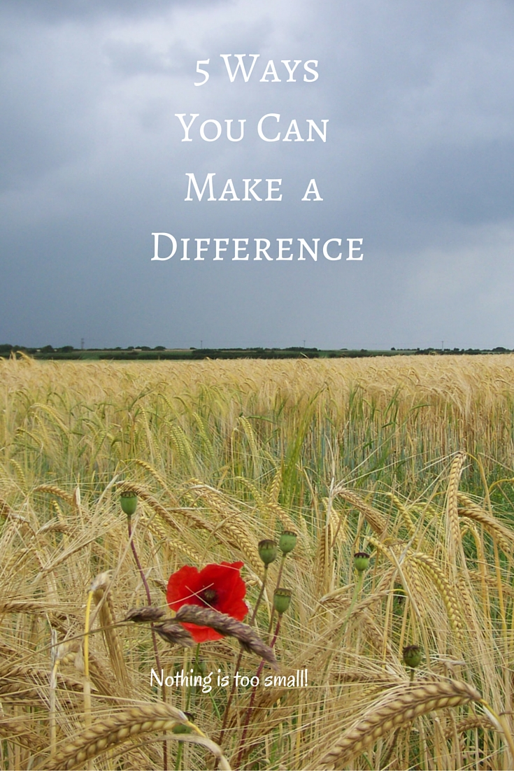 5 Ways You Can Make a Difference Nothing Is Too Small Hyperemesis Gravidarum