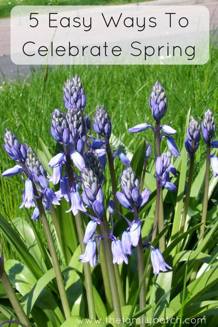 5 Easy Ways to Celebrate Spring as a Family